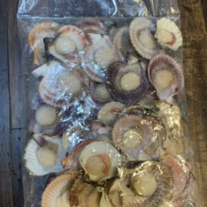 Scallop Half Shell 1kg