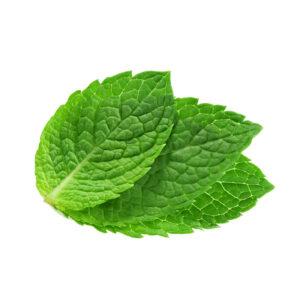 Mint Leaves 100g